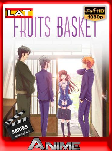 Fruit Basket (2019) (S01-02-03) [Latino][1080p/720p/540p][GoogleDrive][xKakez]