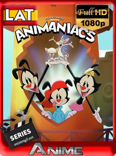 Animaniacs (Temp.1)(2020)[1080p][Latino][Darksider21]